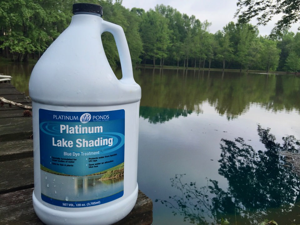 Pond dye is it worth the money platinum ponds lake for How to remove algae from pond without harming fish