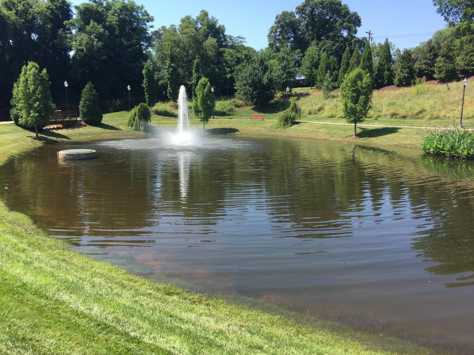 the solution for lyngbya algae platinum ponds amp lake